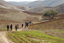 Palestine-hiking-tour-2